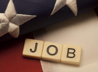 US Employment Data in Focus – November